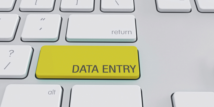 40+ Comfortable, Remote Healthcare Data Entry Jobs - Must Apply Now