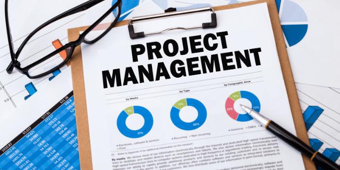 healthcare IT project management